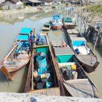 Di Serang  Kemarau, Kampung Kelahiran Wakil Bupati Lingga Juga Kekeringan